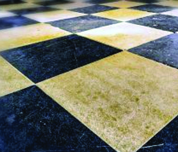 Keeping Tiled Floors Clean Really Cheap Bond Cleaning